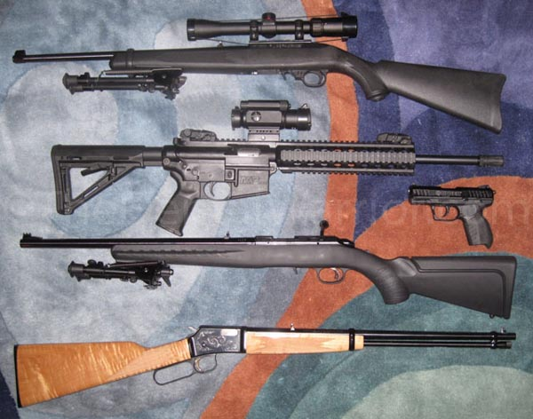 Top to bottom: Ruger 10/22, Smith & Wesson M&P 15-22, Ruger SR22 Pistol, Ruger American Rimfire, Browning BL-22