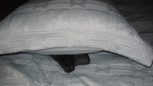 gun-under-pillow